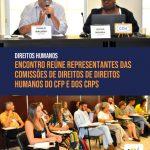 Comissões de Direitos Humanos do Sistema Conselhos discutem articulação nacional com olhar para as especificidades locais